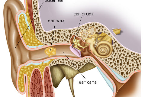 State-of-the-art ear wax micro-suction machine